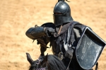knight armored black horseStock_000002637581Small
