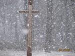 The Cross in My Backyard