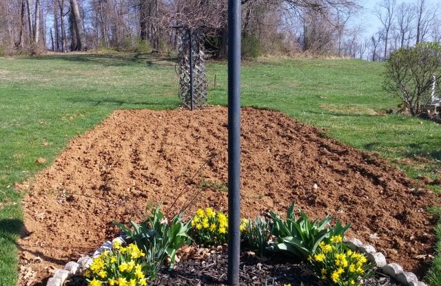 Garden Plowed Pic from Scott 2